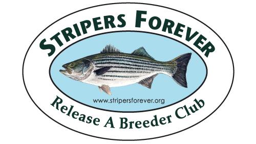 striper at the club