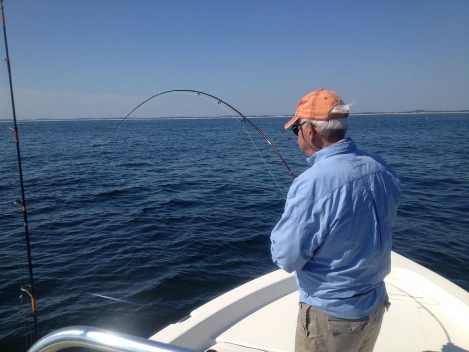 Captain dave rimmer guided fly light tackle ma 2018 for Captain dave s fishing