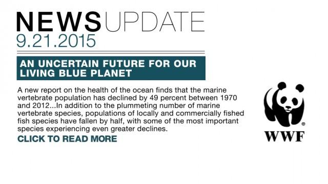 2015_09_21_WWF_MARINE_REPORT_V001