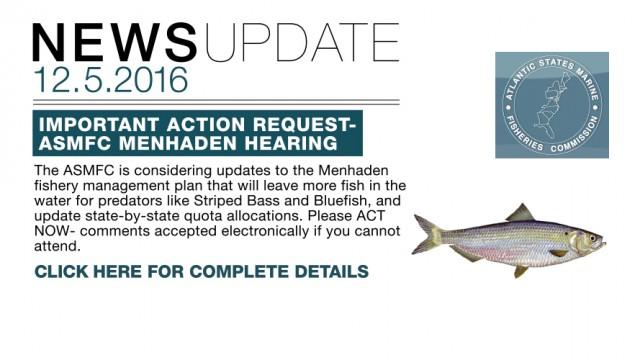2016_08_06_NEWSUPDATE_MENHADEN_V001